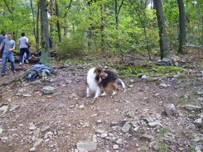 "Sandy was one of the ""hikers"" who stopped to see the action."